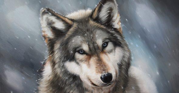 Lời nhắn của sói con: Thân người khó đắc, xin hãy trân quý để tu hành