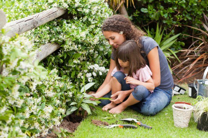 Lúc nhỏ sống gần thiên nhiên, cả đời sức khỏe tinh thần lành mạnh.3