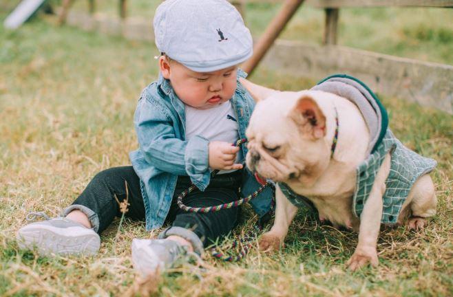 Cậu nhóc khóc ré 'ăn vạ' khi phải chụp ảnh bên cạnh chó - H14