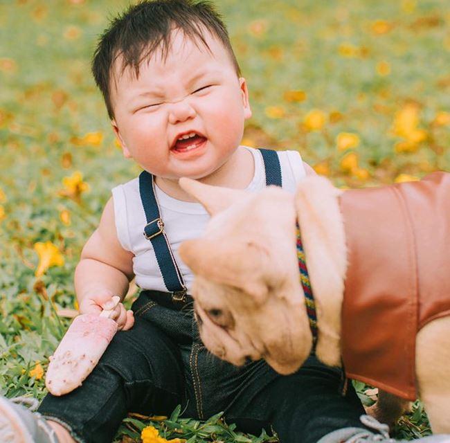 Cậu nhóc khóc ré 'ăn vạ' khi phải chụp ảnh bên cạnh chó - H3
