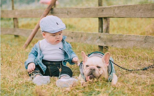Cậu nhóc khóc ré 'ăn vạ' khi phải chụp ảnh bên cạnh chó - H4