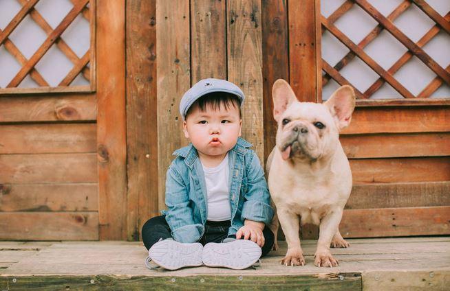Cậu nhóc khóc ré 'ăn vạ' khi phải chụp ảnh bên cạnh chó - H1