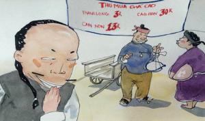 Gia Lai: Người dân đổ xô đi đẽo vỏ thông bán cho thương lái Trung Quốc