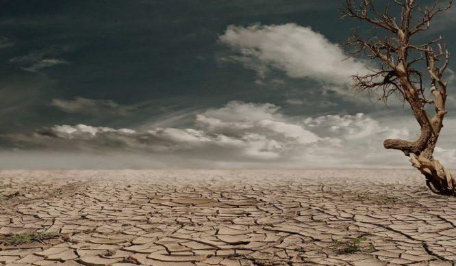 5 tỷ người sẽ phải đối mặt với tình trạng thiếu nước vào năm 2050.2