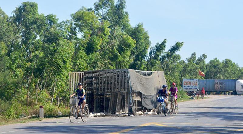 Quảng Bình: Xe tải chở đàn vịt 1.800 con gặp nạn, dân đua nhau hôi của - H1
