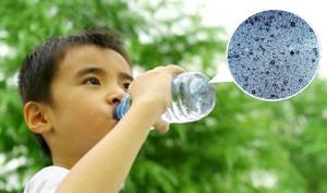 Chúng ta đang nuốt phải 50.000 hạt vi nhựa mỗi năm