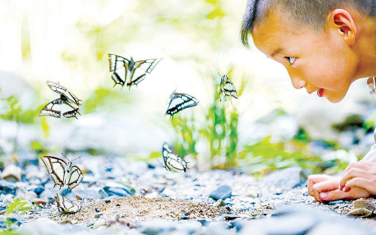 Trẻ em sẽ học hỏi và khám phá nhiều điều bổ ích từ thiên nhiên. (Ảnh minh họa)