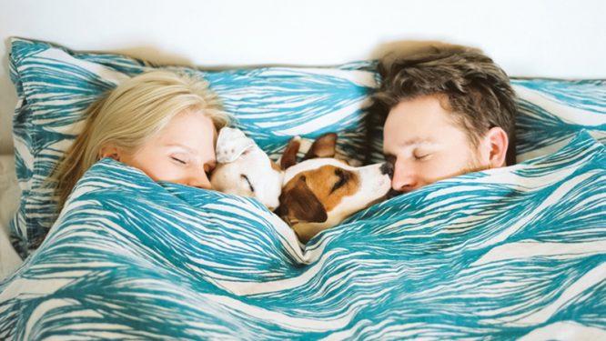 Ngủ, đối với vợ chồng chính là thước đo hôn nhân ấm lạn.2