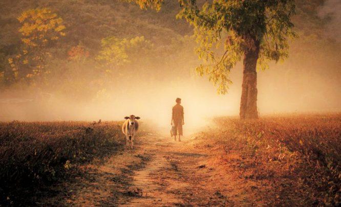 Nỗ lực đến bất lực, gắng gượng đến đáng thương, xã hội này tàn khốc đến vậy sao?.2