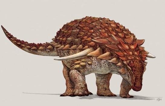 """Khủng long """"bằng xương bằng thịt"""" 100 triệu năm trước xuất hiện tại Canada - H3"""