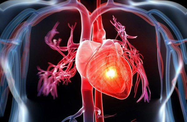Trong táo giàu chất xơ có thể giúp bạn tránh được nguy cơ bị bệnh tim mạch. (Ảnh qua Vinmec)