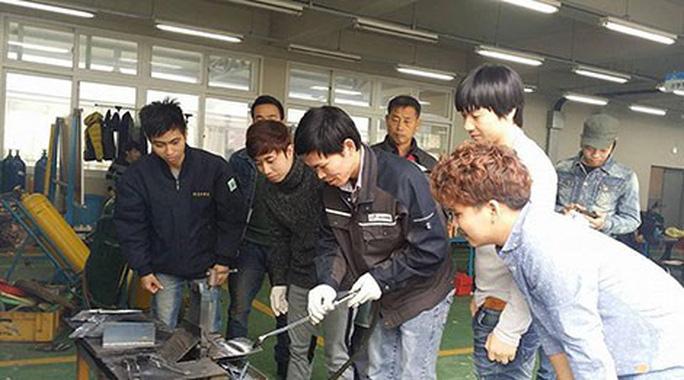 Lao động Việt Nam làm việc tại Hàn Quốc.