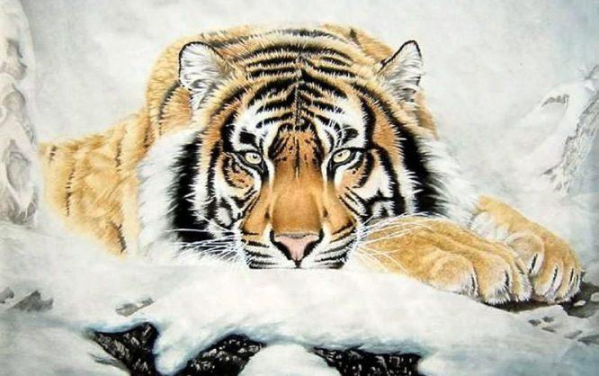 Con hổ này trèo lên mộ, đào lấy quan tài, và ăn xác chết bên trong đó. Sau khi ăn no thì con hổ đó biến lại thành người.