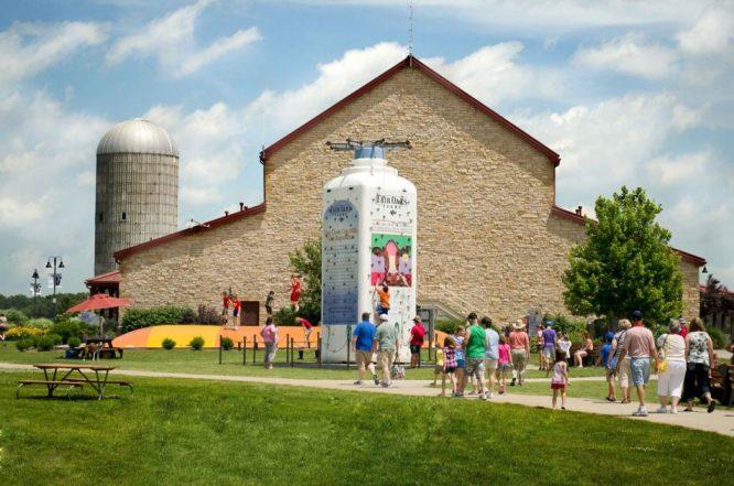 """Sự thật kinh hoàng tại trang trại bò sữa """"hạnh phúc"""" ở Mỹ.6"""