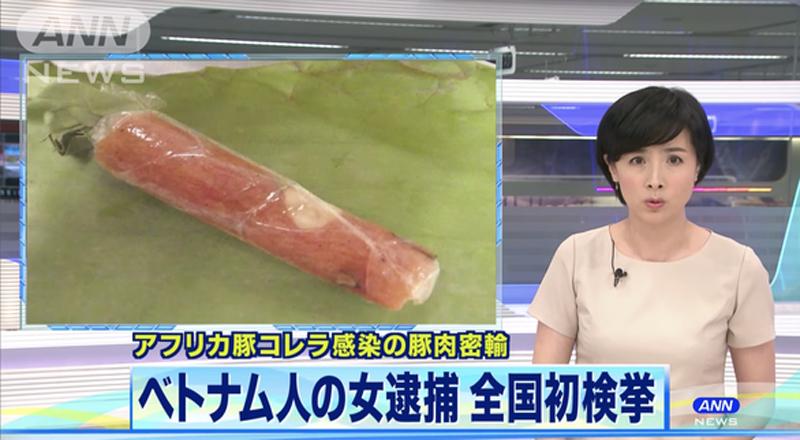 Kênh truyền hình ANN News đưa tin nữ du học sinh Việt bị cảnh sát Nhật bắt vì đem nem chua nghi dính virút dịch tả heo châu Phi tới sân bay Tokyo