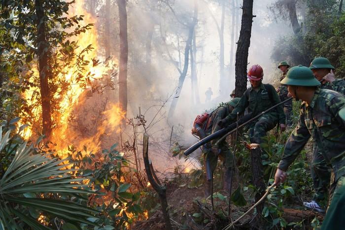 Nhiều người tham gia dập lửa cứu rừng tại Hà Tĩnh