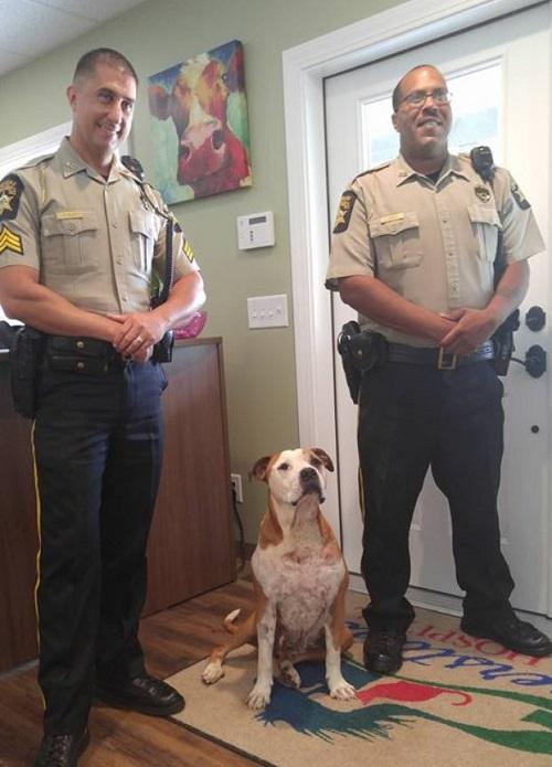 Chú chó Hero và 2 cảnh sát Timothy Clay và Daniel Seeley. (Ảnh qua LikeMag)