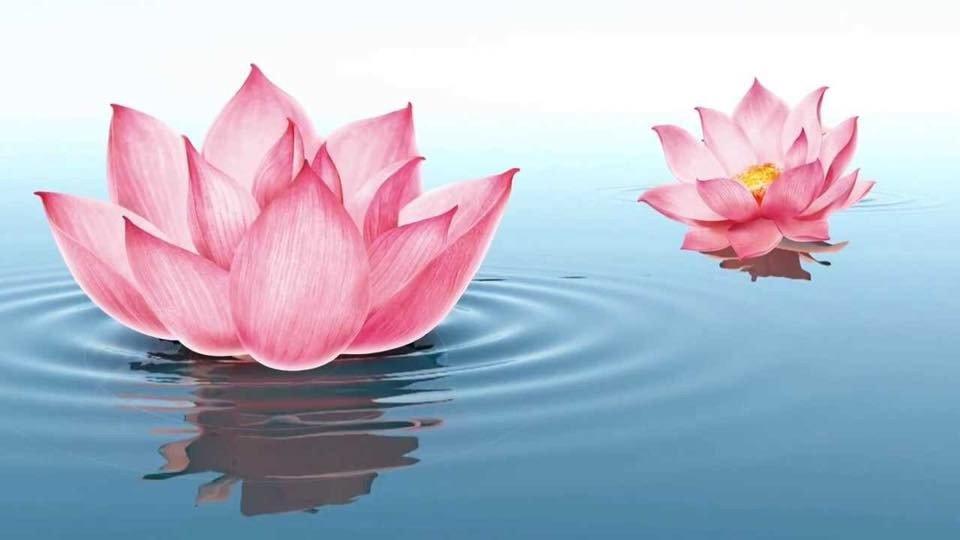 Tâm chứa thiện niệm trời phù hộ, lòng mang chân thành phúc tự đến - ảnh 2