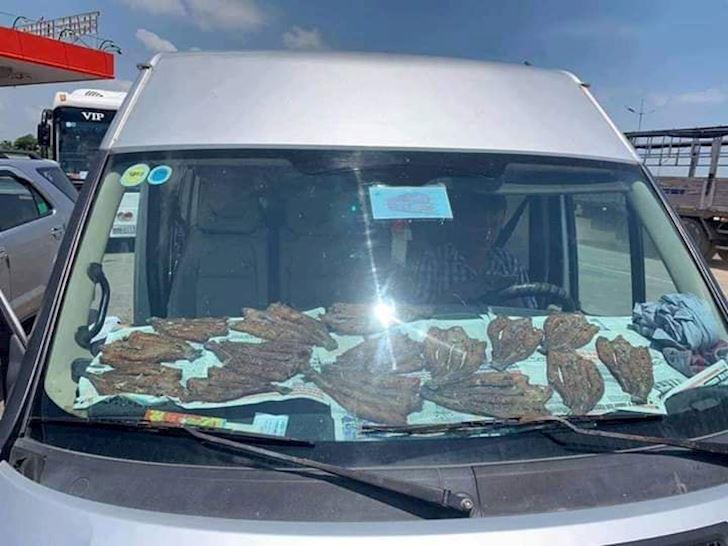 Nhiệt độ trong xe hơi rất cao khi đậu dưới nắng nóng, có thể nướng bánh hay thậm chí là phơi khô.