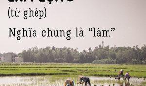 """Ở Việt Nam, nhiều mẹ hay gọi con là """"Thằng Tí"""", nhưng """"Tí"""" nghĩa là gì?"""