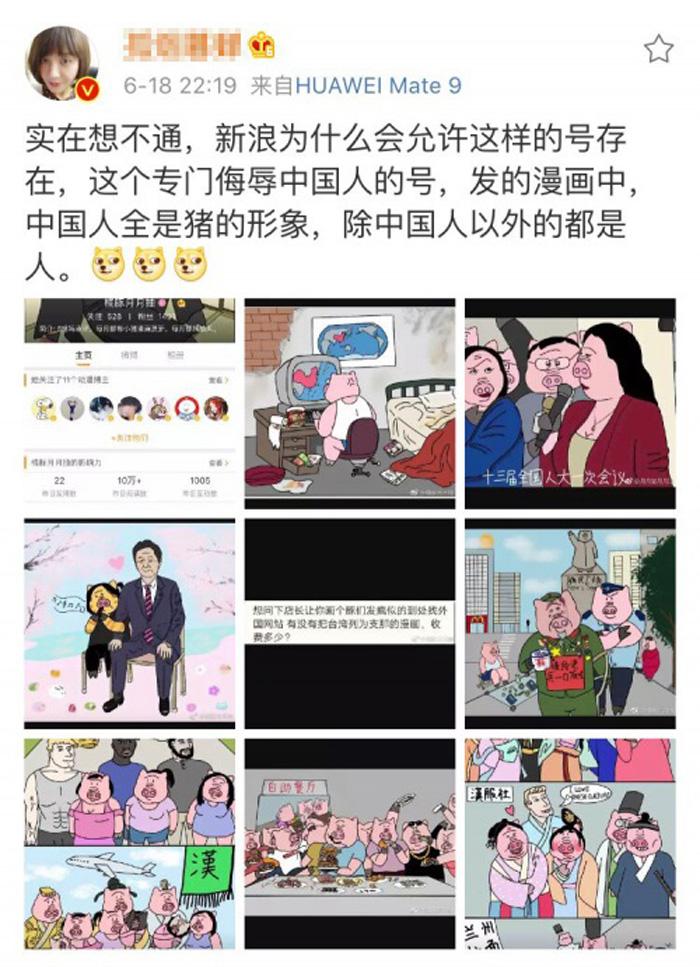Những tranh biếm họa vẽ người Trung Quốc thành mình người đầu lợn, chế giễu những hành vi xấu xí của người Trung Quốc.