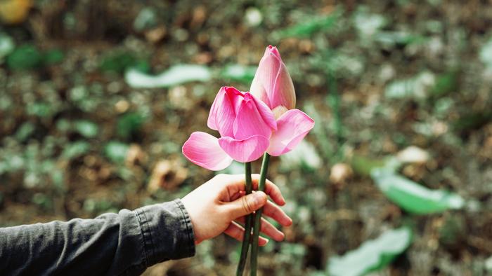 Người sống nhân đức thì ông trời cũng ban phúc, vận mệnh vì thế mà cũng có cải biến.