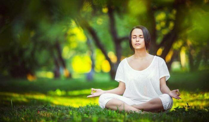 các cơ quan trong cơ thể muốn hoạt động bình thường hoàn toàn phải dựa vào sự vận động của dương khí.