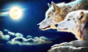 Rất nhiều loài động vật đều có linh tính, có thể phân biệt được người tốt xấu, thậm chính biết trả ơn người đã cứu giúp mình.