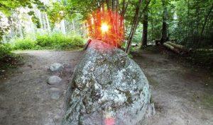 Những hiện tượng huyền bí thách thức giới khoa học trong khu rừng Pokaini