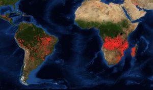Rừng châu Phi cháy gấp ba lần Amazon