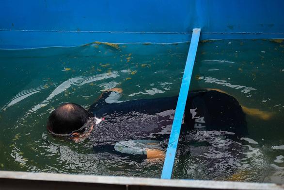 Ông Kubo Jun đã trực tiếp ngụp lặn xuống bể nước đã qua xử lý trước sự chứng kiến của hàng trăm người.