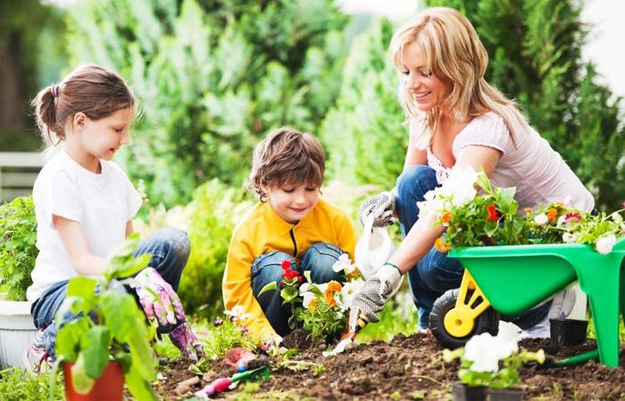 Nghiên cứu cho thấy: Nghịch bùn đất giúp trẻ trưởng thành khỏe mạnh hơn