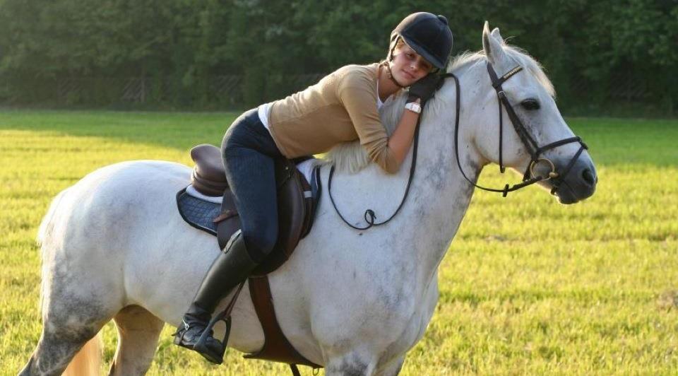 Nghiên cứu cho thấy ngựa có khả năng ghi nhớ chính xác cảm xúc con người