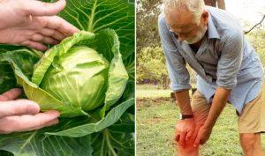 Cơn đau khớp của bạn sẽ biến mất sau 1 giờ nhờ 'băng bó' bằng bắp cải
