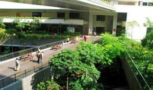 Bệnh viện 'cây xanh' ở Singapore: Nơi bệnh nhân được thư giãn như đang đi du lịch