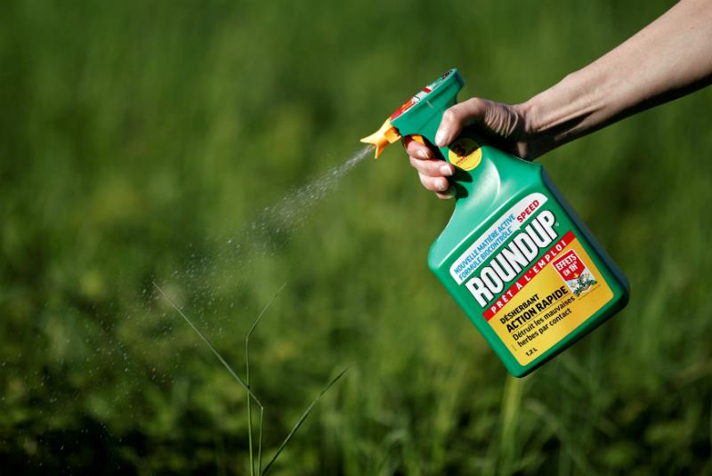 Sản phẩm thuốc diệt cỏ Roundup của Monsanto. (Ảnh qua 24 Horas)