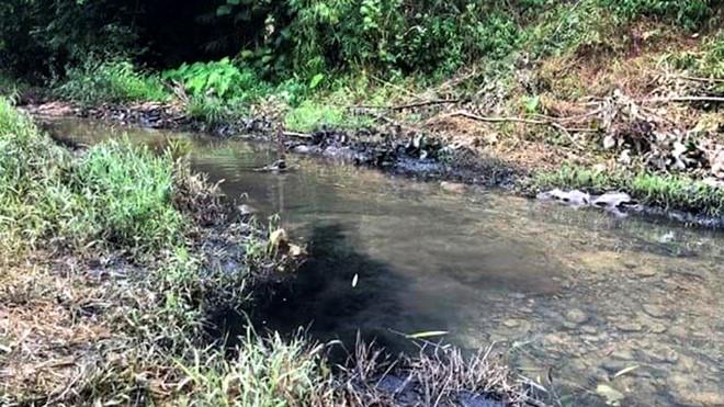 Dầu thải gây đen ngòm nước đầu nguồn sông Đà dẫn đến ô nhiễm nặng.