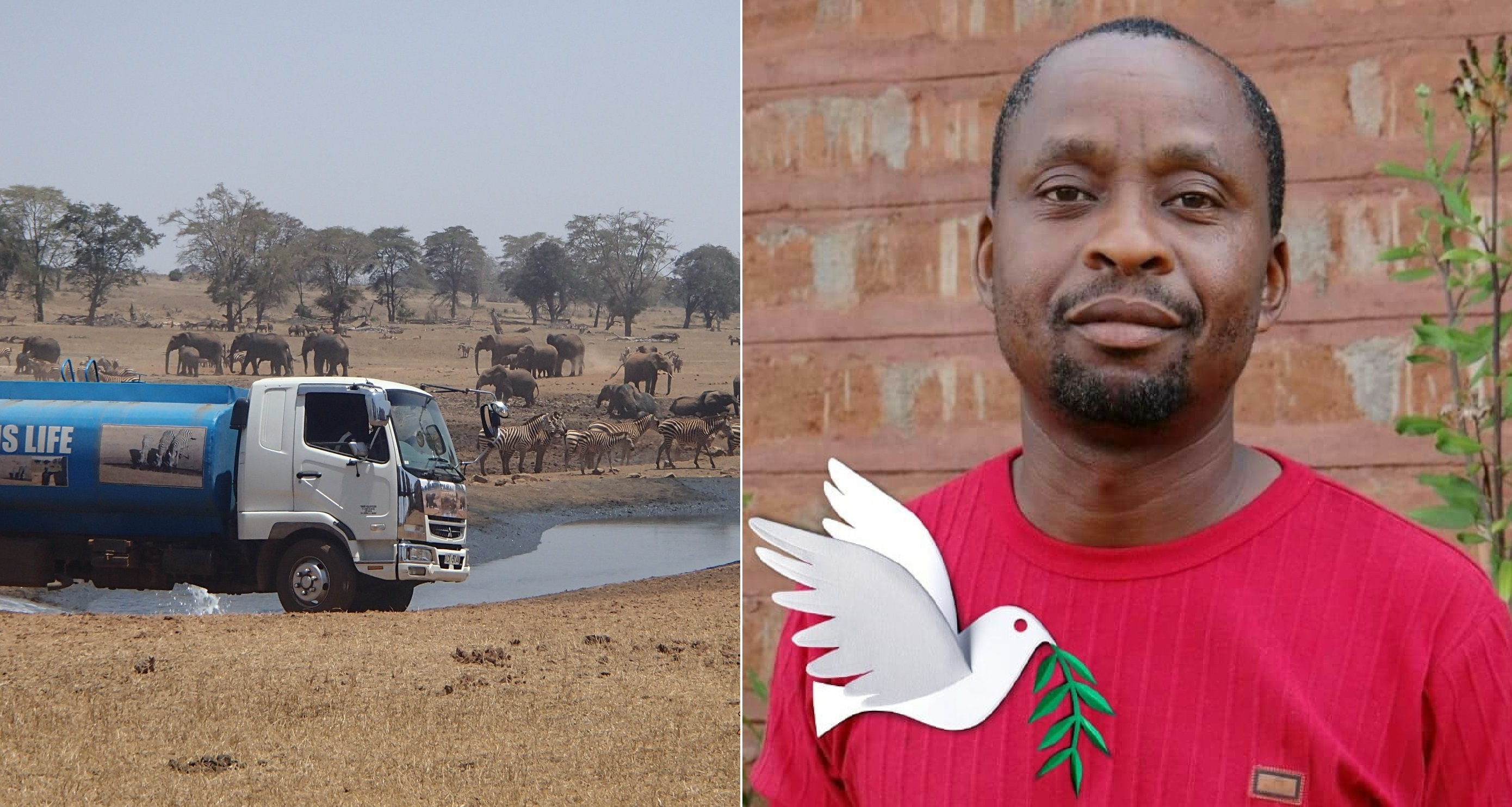 Người đàn chở nước cung cấp cho động vật hoang dã khỏi bị chết khát