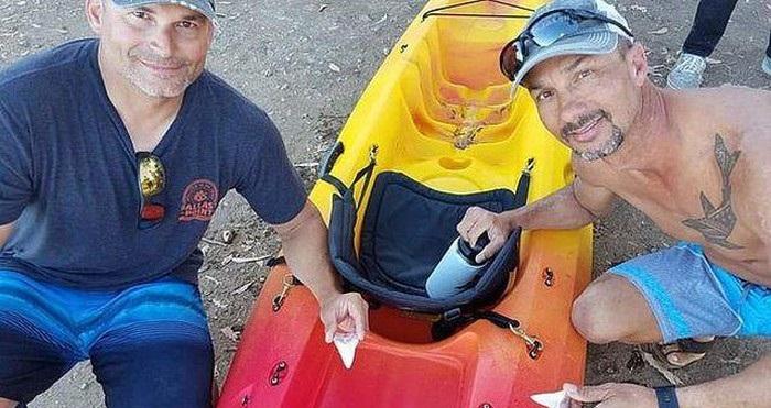 Bill Powers và Daniel McDaniel may mắn thoát chết sau cuộc tấn công của cá mập.