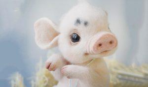 Nghệ thuật đan len: Tạo hình động vật trông sống động như thật
