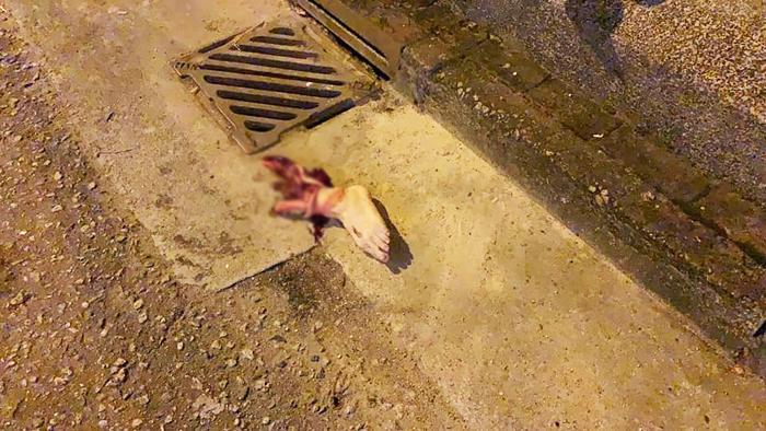 Chân trái của nạn nhân từ chỗ mắt cá chân đã bị đứt lìa ra, bắp chân cũng bị văng ra rãnh nước ở bên đường. (Ảnh: Lihkg)