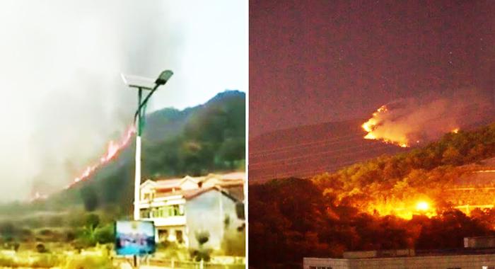 Vào thời điểm vụ cháy diễn ra, mạng xã hội chính thức của Cơ quan Phòng chống Cháy rừng không xuất hiện bất kỳ tin tức nào liên quan.