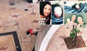 """Hồng Kông: Xuất hiện xác phụ nữ nghi là mẹ của Trần Ngạn Lâm bị """"diệt khẩu"""""""