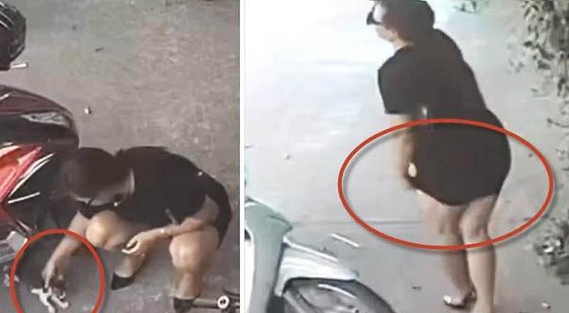 Cô gái bắt trộm mèo rồi giấu vào váy bỏ đi khiến dân mạng bức xúc.