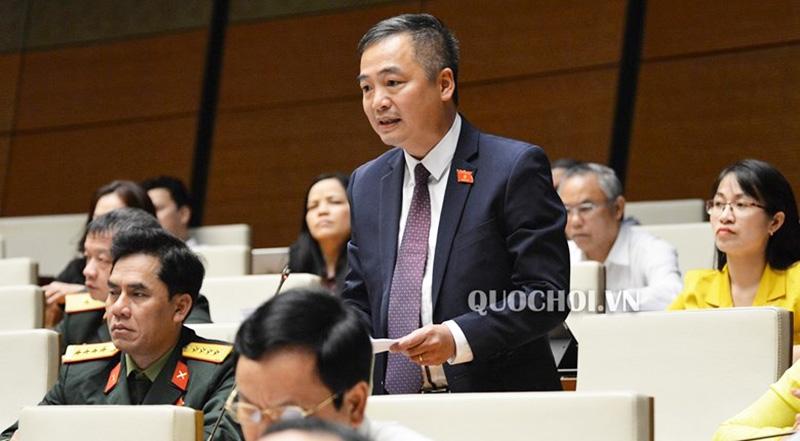 Đại biểu Nguyễn Lân Hiếu.
