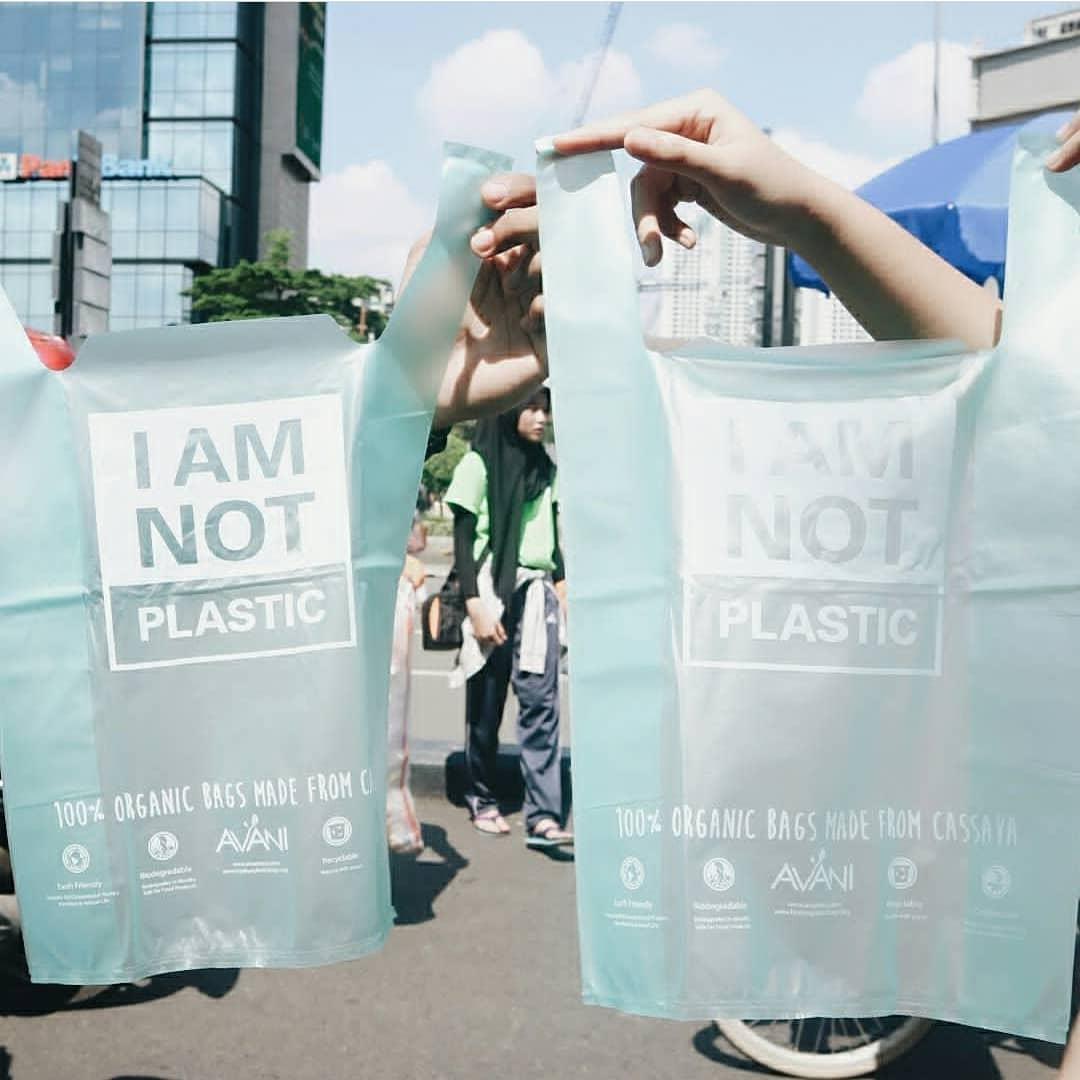 Túi nilon: Thân thiện với môi trường đến mức có thể dùng để nuôi cá