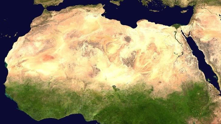 """Châu Phi xây dựng """"Bức Tường Xanh Vĩ Đại"""" nhằm chống lại tình trạng sa mạc hóa"""