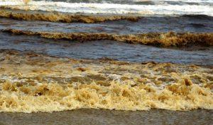 Nước biển chuyển đen, nổi bọt vàng bất thường ở gần Khu kinh tế Dung Quất, Quảng Ngãi