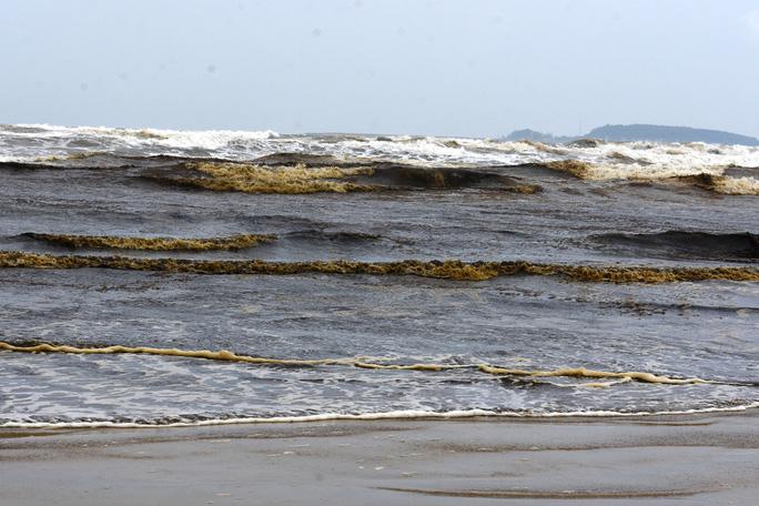 Khu vực nước biển đen bất thường gần các công ty công nghiệp nặng.