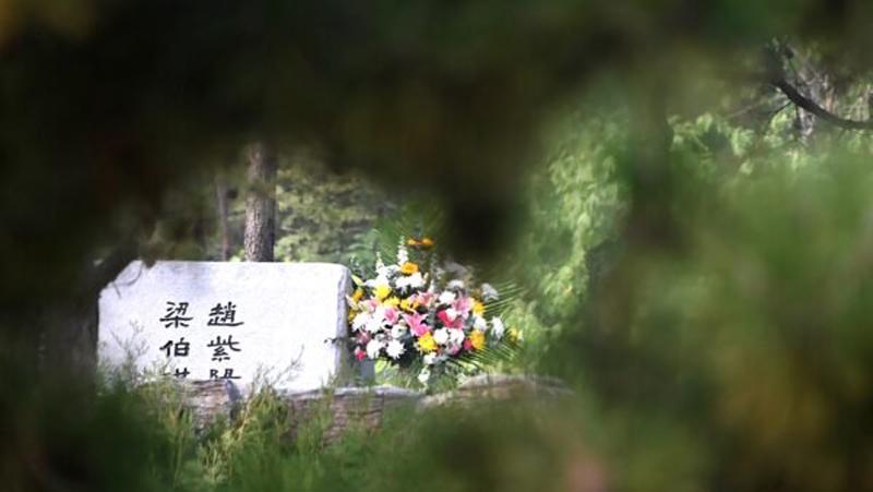 Chính quyền đã trồng nhiều cây lớn để che bia mộ, gắn thêm camera giám sát, người dân không thể tặng hoa, cúi chào và chụp ảnh trước ngôi mộ.